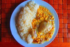 potrawka z kurczaka (2)