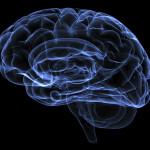 Płytki umysł, co net robi z naszym mózgiem