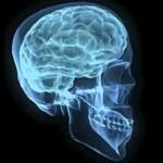Mózg artysty