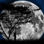 Księżyc mnie zabrał na spacer