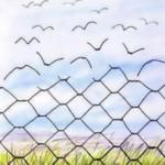 Wolność jaka to piękna perspektywa