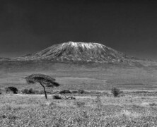 Kilimandżaro samotnie stojące