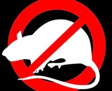 Nastał czas walki z pasożytnictwem