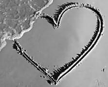 Przestań na siłę kochać