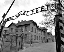 Wolność albo śmierć